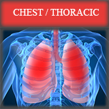 chest thoracic